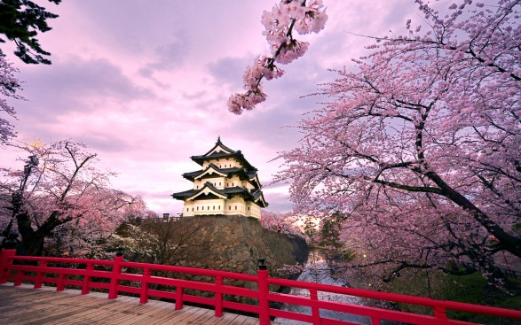 Highest Exporting Companies - Japan