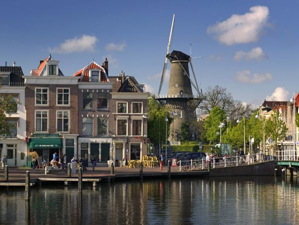 Highest Exporting Companies - Netherlands
