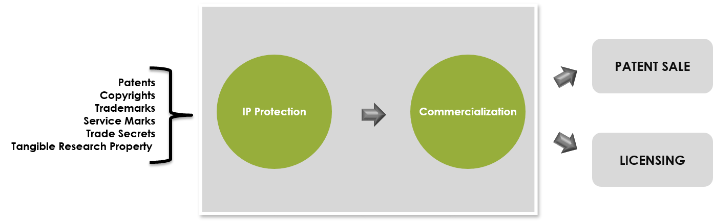 Intellectual Property Commercialization Ip Wevio