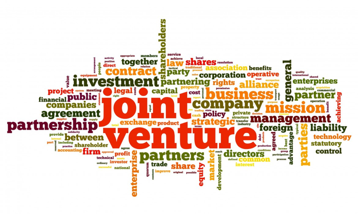 Joint Venture | Global Business Development Company & Investment ...