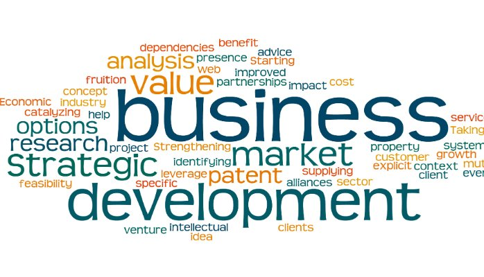 Business-Development