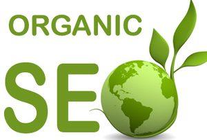 organic-ranking